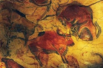 Museo y Cueva de Altamira_310
