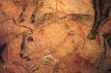 Museo y Cueva de Altamira_303