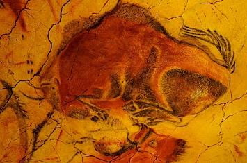 Museo y Cueva de Altamira_308