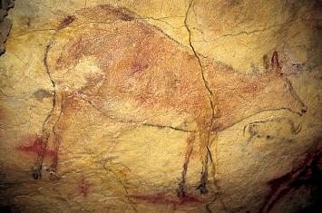 Museo y Cueva de Altamira_306