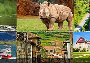 Tours, actividades y atracciones