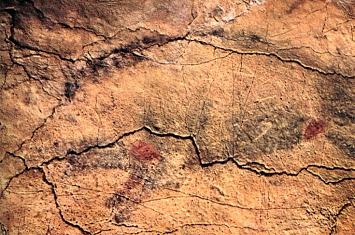 Museo y Cueva de Altamira_309