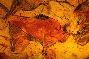 Museo y Cueva de Altamira_304