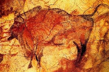 Museo y Cueva de Altamira_305